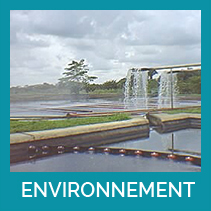 TH_environnement